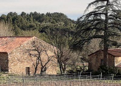 maison dans les vignes paint